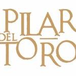 ¡Bienvenidos al perfil oficial de Pilar del toro, viajeros!