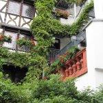 Photo of Hotel Restaurant Doctor Weinstuben