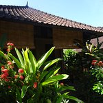 Photo of Hidden Paradise Cottages