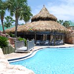 The Purple Parrot Resort pool sits right beside the Tiki Bar and Grill!