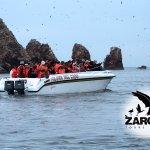 Reserva Nacional de Paracas con Zarcillo Connections