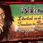 Foto de Freedom In Paradise