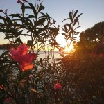 Photo de TRH Jardin del Mar