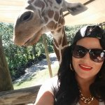 Loved feeding and taking selfies with the giraffes!!!