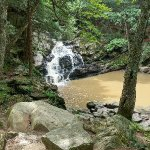 Wahconah Falls State Park Foto