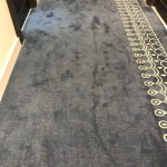 do you think the carpet in the hallway has ever been cleaned?