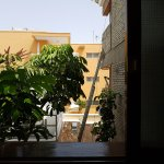 Photo of Apartamentos El Paseo