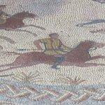 Photo of Museu Monografico de Conimbriga