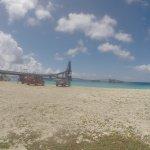 Salt Pier Surface