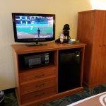 TV, Large Frig, Microwave