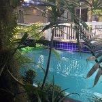 Foto de La Te Da Hotel