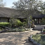 Foto di Kambaku Safari Lodge