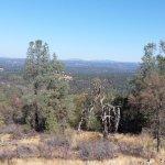 View from Mt Aukum Winery