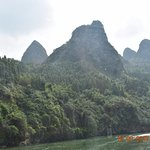 bamboo trees with awesome mountains on the Li river