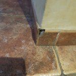 Chipped tiled skirting, dangerous if knocked by small family member