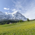 Bilde fra Aspen Alpin Lifestyle Hotel Grindelwald