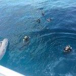 Poseidon Outer Reef Cruises Foto