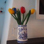Tulip of Amsterdam B&B Foto
