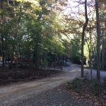 Photo de Asheville Cabins of Willow Winds