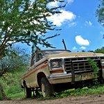 Ford 1979... reliquia de los habitantes del rancho...