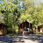 Cabins available for guests