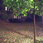 Planty Park Foto