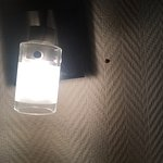 bug on headboard
