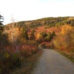 Photo of Forillon National Park