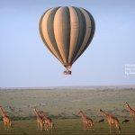 Photo of Kenya Incentive Tours & Safaris - Day Tours