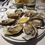 8 belles huîtres