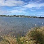 View at Swan Lake
