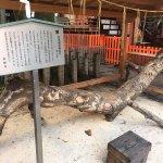神社裡的龍紋木雕