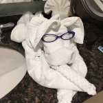 My son thought their towels were nicely folded so he wanted to add a little :-)
