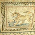 Floor mosaic in Terrace House Ephesus