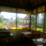 Best place to stay in kintamani