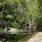Whitsunday Great Walk