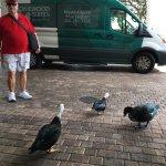 Foto de Homewood Suites Miami-Airport / Blue Lagoon
