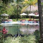 Small garden pool.