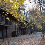 Photo de Yosemite Valley Lodge