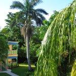 Photo de Grand Pineapple Beach Negril