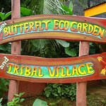 PALAWAN BUTTERFLY ECO-GARDEN AND TRIBAL VILLAGE