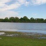 Photo of Tidal Basin