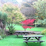 Autumn at the Lagg Hotel