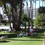 Photo of Hotel Riu Palace Oasis