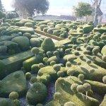 labyrinte de taupières