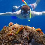 Snorkelling on the house reef