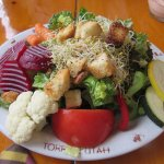the famous huge 10 vegetable salad!!