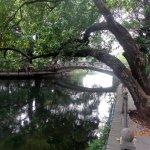 Foto de Lychee Bay Scenic Area