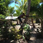 ภาพถ่ายของ Robinson Crusoe Island Resort