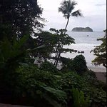 Photo de Arenas del Mar Beachfront & Rainforest Resort